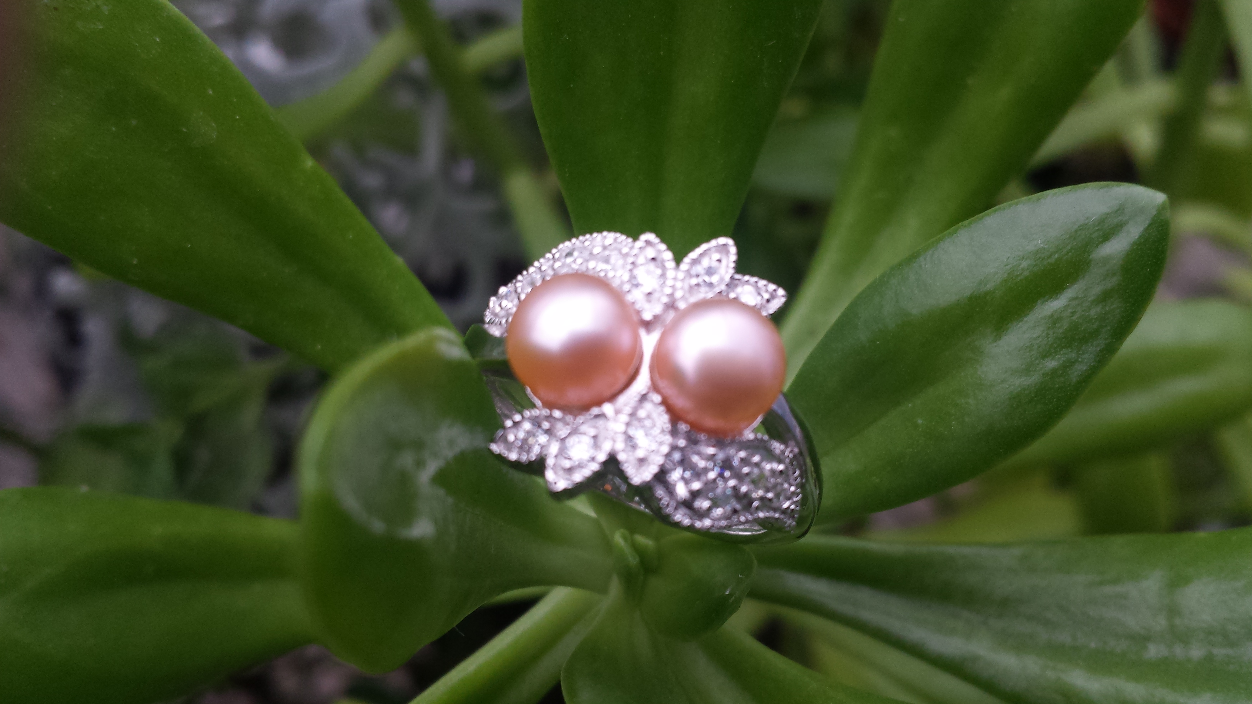 DOUBLE PINK NATURAL FRESHWATER PEARL RING WITH 925 STERLING SILV